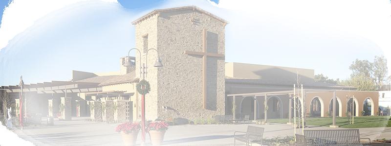Home - St Thomas More Catholic Church